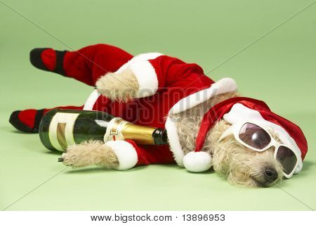 Samll Dog In Santa Costume Lying Down