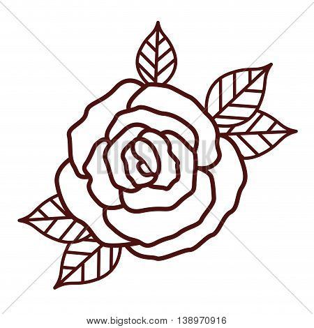 beautiful rose isolated icon design, vector illustration  graphic