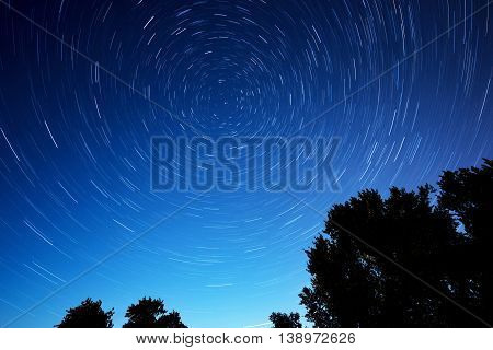 night star trails with tree as foreground