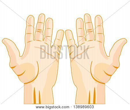 Palm of the person on white background is insulated