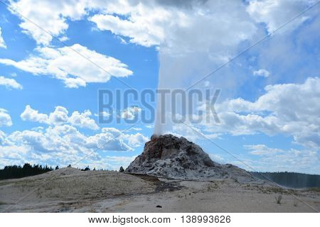 Eruption Of White Dome Geyser At Yellowstone National Park