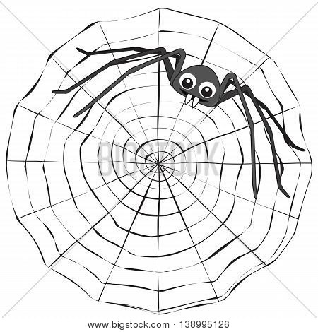 Simple cartoon spider web and grey spider on a white background.
