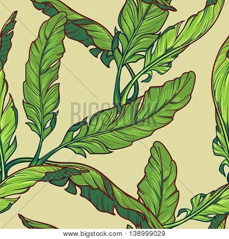Banana plant leavs on a light green background. Tropical jungle. Seamless pattern with Irregular distribution of elements. EPS10 vector illustration.