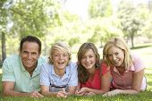 stock photo of 13 year old  - Couple And Their Teenage Children Lying On Grass - JPG
