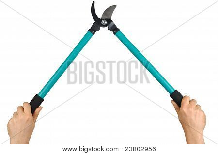 Hands With Loppers