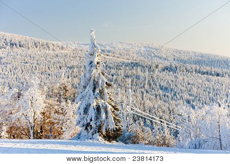 Orlicke Mountains in winter, Czech Republic