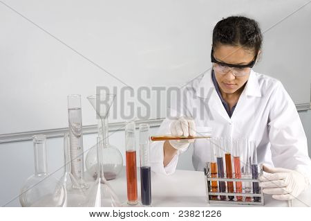 female lab