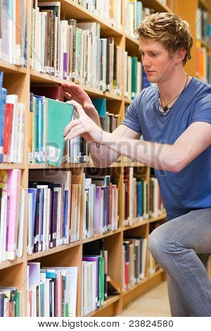Portrait Of A Male Student Choosing A Book