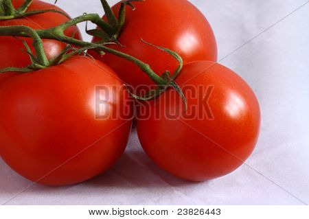 Bunch Of Fresh Vine Tomatoes