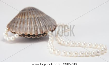 Clam And Pearls