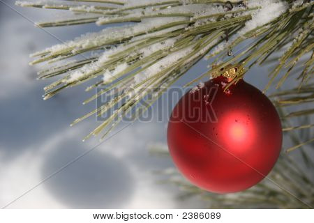 Red Christmas Ornament In Snowy Pine Tree