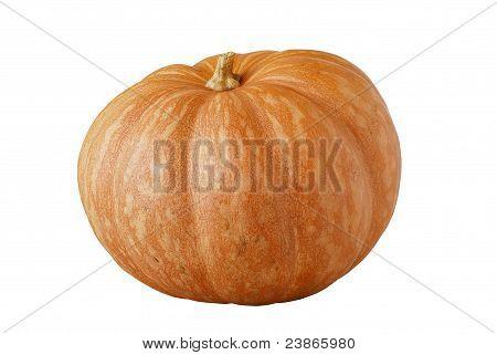 Whole Orange Ripe Pumpkin