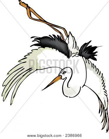 Stork.Eps