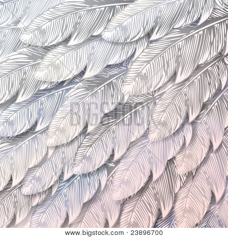 Fondo transparente de plumas blancas, Close Up