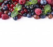 Mix Berries On A White Background. Berries And Fruits With Copy Space For Text. Black-blue And Red F poster