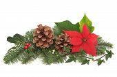 picture of poinsettias  - Christmas decoration of mistletoe holly with berries poinsettia flower ivy pine cones and spruce fir leaf sprig isolated over white background - JPG