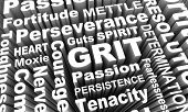 Grit Passion Perseverance Persistence Word Collage 3d Illustration poster