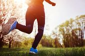 Young Woman Running In Spring Forest In The Morning. Close-up Of Sneakers. Helathy Lifestyle. Mornin poster