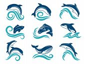 Pictures Of Dolphins And Other Marine Animals. Logo Design Template. Dolphin Animal And Fish Jump Em poster
