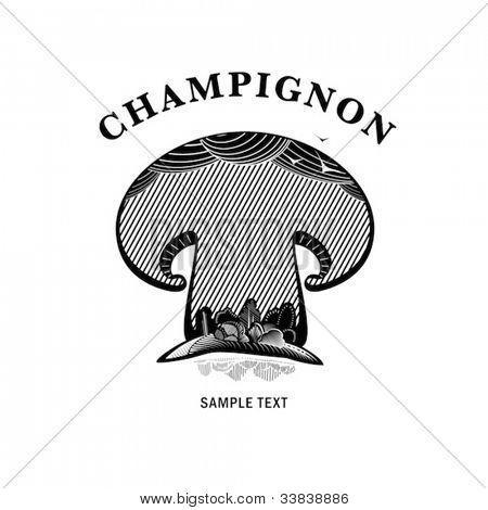 mushroom, engraving style illustration