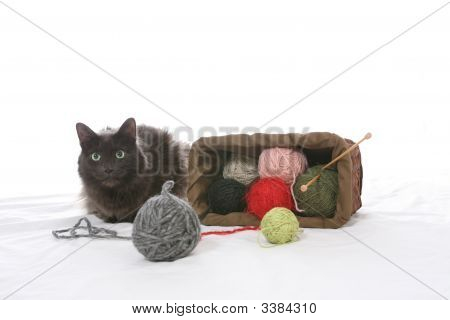 Cat Tipped Over Knitting Basket