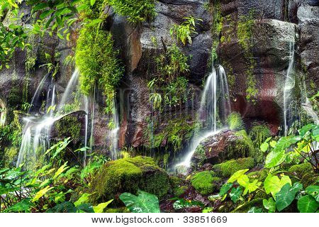 Several small waterfalls with greenery and moss covered rocks at Trois Bassin on Reunion Island.