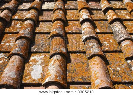 Detail Of Terracotta Roof Tiles