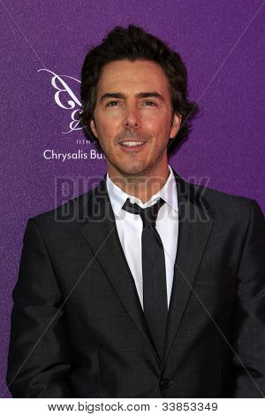 LOS ANGELES - JUN 9:  Shawn Levy arriving at 11th Annual Chrysalis Butterfly Ball at Private Residence on June 9, 2012 in Los Angeles, CA