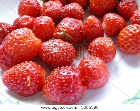 A Strawberry Plate