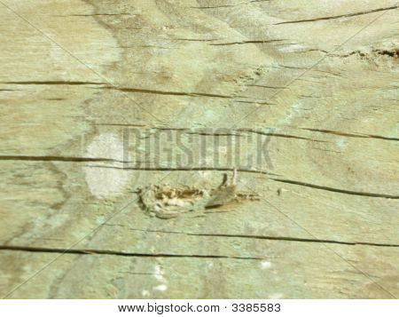 Horizontal Stripes On Wood
