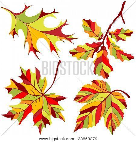Autumn Leaves Design Elements