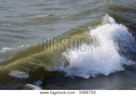 Sea Surf Wave