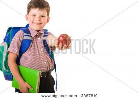 Clever Schoolchild