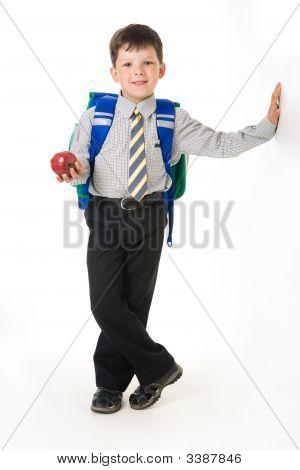 Diligent Boy