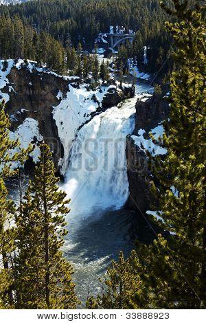 Waterfall in Grand Canyon  Yellowstone, Yellowstone National Park