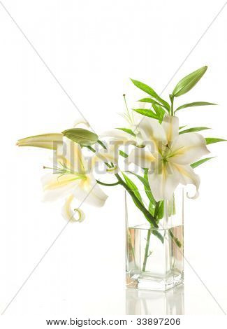 Lily Bouquet isolated on white background
