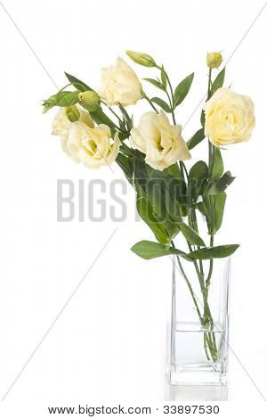 Vase of flowers isolated on white.  eustoma