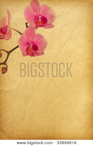 vintage floral background with space for text or image. flower paper textures.