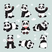 Cartoon Panda. Cute Panda Bear, Happy Baby Animals, Lazy Funny Chinese Bears Posing. Friendly Mascot poster