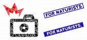 Mosaic Camera Flash Pictogram And Rectangular For Naturists Stamps. Flat Vector Camera Flash Mosaic  poster