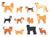 Dogs Breed Character. Purebred Dog Pedigree, Cute Puppy Pug, Beagle, Welsh Corgi And Bull Terrier, F poster