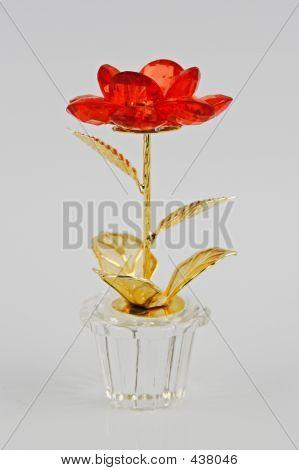 Flower Jewllery