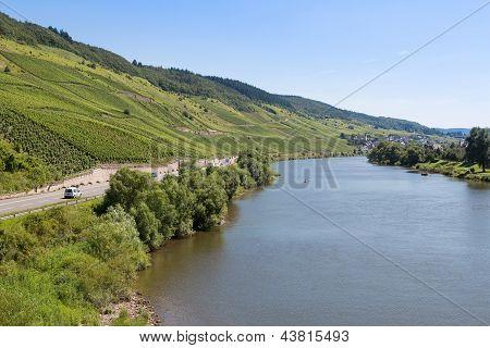 Vineyards Along German River Moselle