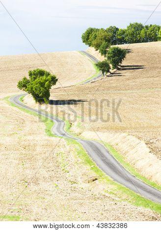 campo con un camino, el Departamento de Gers, Francia