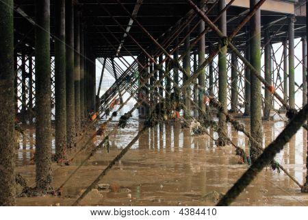 Under The Pier Jpg