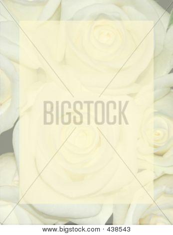Rose Background Stationery
