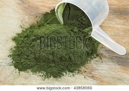 Hawaiian spirulina powder spilling of a plastic measuring scoop, wooden background