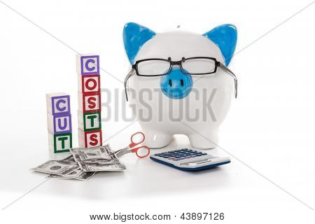 Blue and white piggy bank wearing glasses with cut costs blocks and scissors cutting dollars
