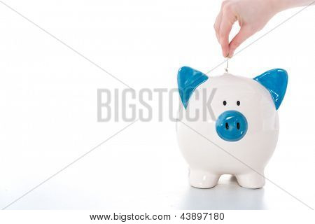 Hand putting coin into blue and white piggy bank with copy space on white background