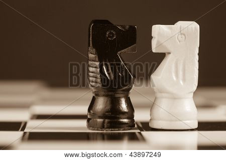Two chess knights facing each other on the chess board